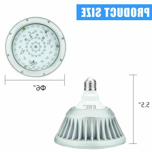 12V Light Bulb Replacement for 500W